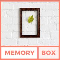 memory box, translation, sell beyond