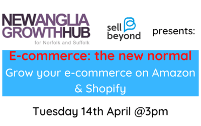 How to Grow Your E-Commerce and Amazon With Heloise From Sell Beyond & Nathan From Quickfire Digital