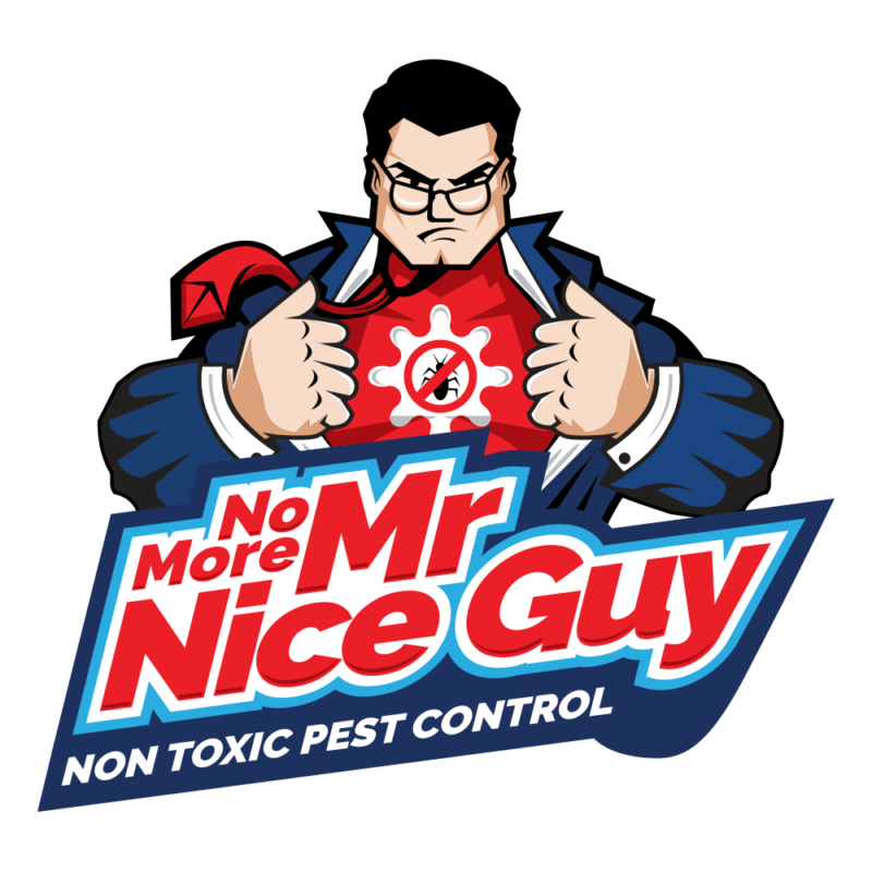 No More Mr Nice Guy logo